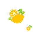 Lemon. Citrus fruit on white background - 133648717