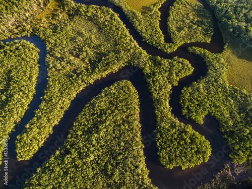 Obraz na Plexi Top View of Amazon Rainforest, Brazil