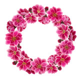 Sakura Flower Wreath. Pink floral circle frame