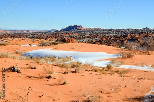 Poster Wüstenwinterlandschaft