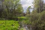 Весна на реке Малашка