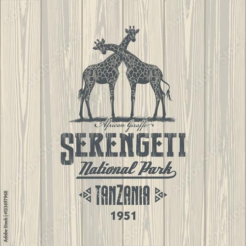 Poster Жирафы, Национальный парк Серенгети, Танзания, на деревянном фоне, иллюстрация,