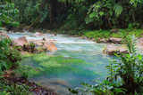 Rio celeste and vegetation