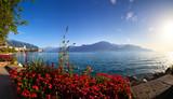Geneva lake panorama