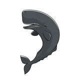 Cachalot sperm whale isolated vector icon