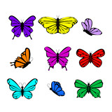 Butterflies colorful collection