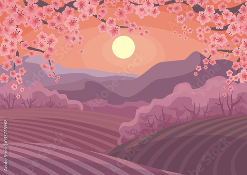 Aluminium Beautiful spring landscape with the blossoming Oriental cherry. Vector background.