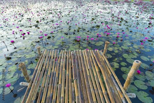 lake of lotus Poster