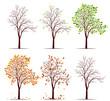 Seasons of tree vector