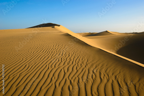 Foto op Aluminium Canarische Eilanden Sand dunes on the beach of Maspalomas, Gran Canaria, Spain