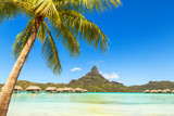 View of the Otemanu mountain with palm tree and stunning lagoon. - 133765302