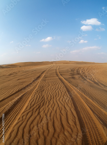 Tracks in the desert, United Arab Emirates, Dubai Poster