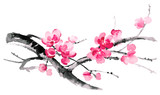 Ink illustration of blooming branches of cherry. Sumi-e, u-sin, gohua painting style. Silhouette made up of brush strokes isolated on white background. - 133801986