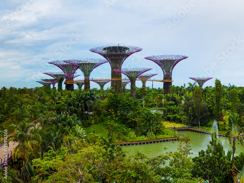 Park Gardens by the Bay - Singapore Poster