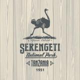 Страус африканский, Национальный парк Серенгети, Танзания, на деревянном фоне, иллюстрация, вектор - 133919733