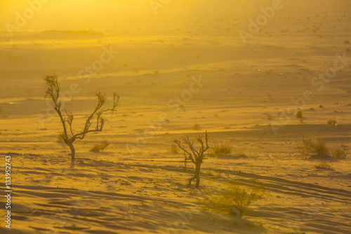 Poster Wadi Rum Desert in Jordan sand stone