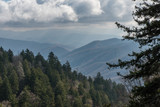 Late fall at the Great Smoky Mountains National Park