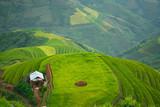 Home of the Hmong mountain