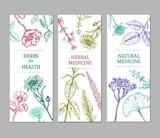 Sketch Herbal Vertical Banners