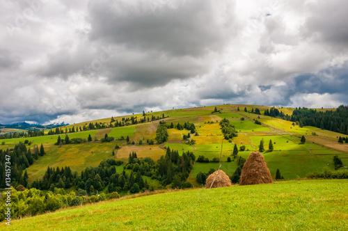 Haystacks on beautiful summer field in Carpathian mountain © monshtadoid