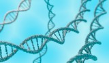 DNA double helix molecules on blue background. 3D rendered illustration. - 134253345