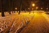 Mariyinsky Park in the evening
