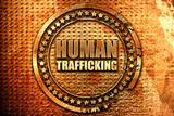 human trafficking, 3D rendering, grunge metal stamp - 134290130
