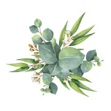 Watercolor vector bouquet with green eucalyptus leaves and branches. - 134329964