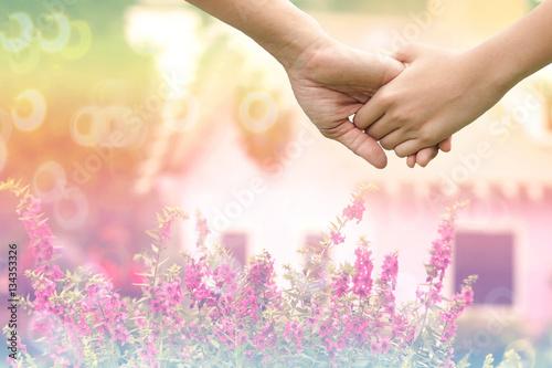 pink flowers in garden Poster