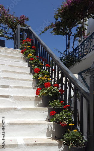 Potted flowers on a white stairs in Mykonos