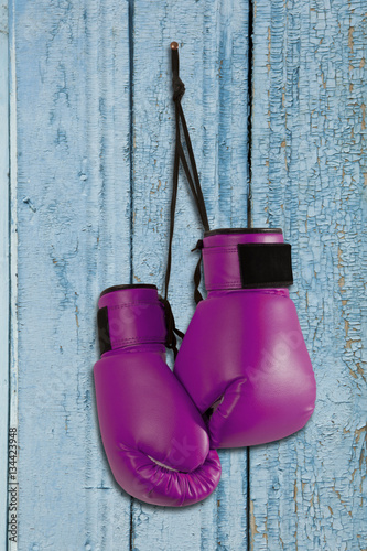 Pair ofboxing gloves hanging on wooden wall Poster