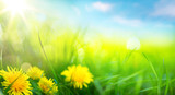 Fototapety art abstract spring background or summer background with fresh g