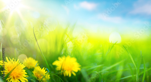 Plexiglas Geel art abstract spring background or summer background with fresh g
