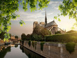 Notre Dame and park