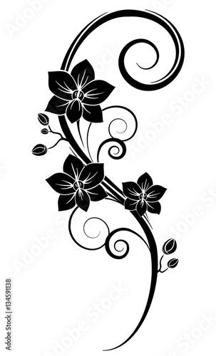 Orchids wall tattoo black - 134591138