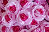 rose flower background for Valentine