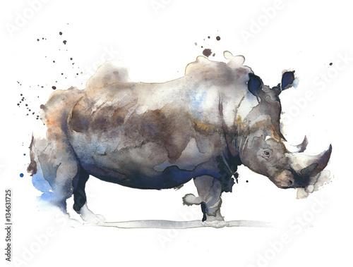 Rhinoceros african safari animal watercolor painting illustration isolated on white background