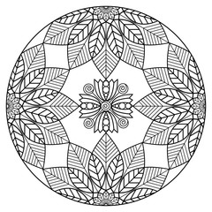 Black and white botanical mandala ornament. Vector illustration for coloring book pages.