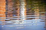 Riflesso nell'acqua - 134777556