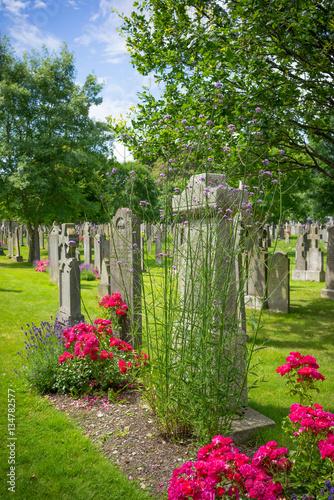 Stampa su Tela Cemetery