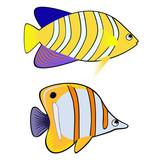 Bright fishes cartoon