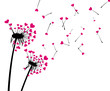 Valentine's background with love dandelions.