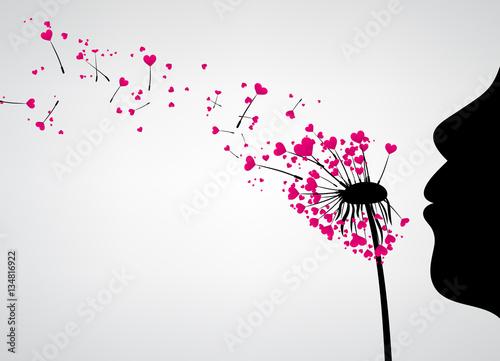 Fototapeta Valentine's background with love dandelion.