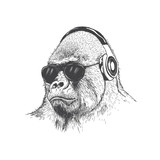 Monkey music fan hand drawn vector - 134820507