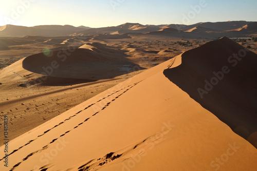 Poster Dünenlandschaft in der Wüste Namibias bei untergehender Sonne