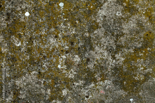 In de dag Stenen Old concrete wall with moss on, texture. Mossy concrete surface wallpaper. Mossy beton background image. Beton with bryophyte backdrop. Moss-grown old beton wall.