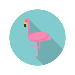 Flamingo color flat icon