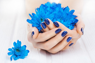 blue manicure with chrysanthemum flowers. spa