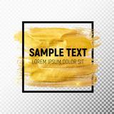 Fototapety Gold Paint Glittering Textured Art Illustration. Vector Illustra