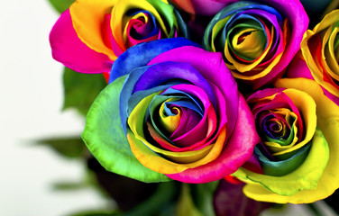 Rainbow roses on white bricks and wood background. Postcard for Valentine's and Mother's day